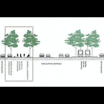 Une proposition à débattre: une piste cyclable sécurisée av.Louise